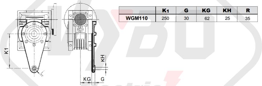 torzní rameno převodovka wgm110