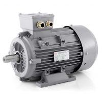Elektromotory 1ALZ – 2800 ot. min. -1